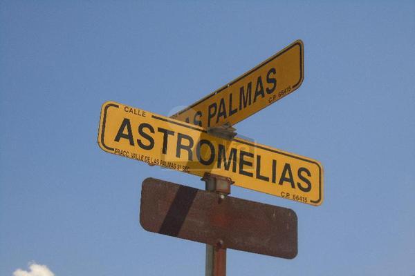Foto de terreno comercial en renta en astromelias y palmas , las palmas, apodaca, nuevo león, 5709329 No. 02