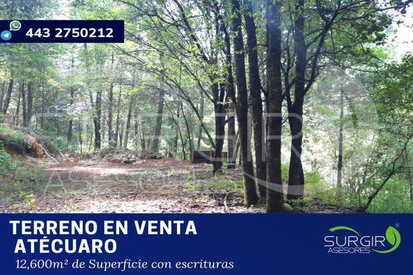 Foto de terreno habitacional en venta en  , atécuaro, morelia, michoacán de ocampo, 8844717 No. 01