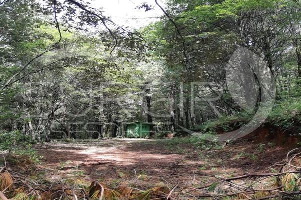 Foto de terreno habitacional en venta en  , atécuaro, morelia, michoacán de ocampo, 8844717 No. 02