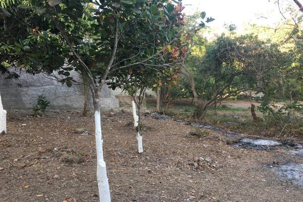 Foto de terreno habitacional en venta en aticama , matanchen, san blas, nayarit, 20221269 No. 02