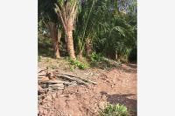 Foto de terreno habitacional en venta en aticama , palmar de los cocos, san blas, nayarit, 14024450 No. 05