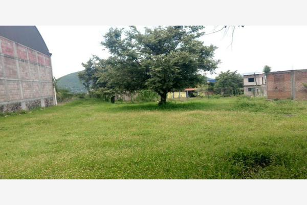 Foto de terreno industrial en venta en  , atlihuayan, yautepec, morelos, 0 No. 06