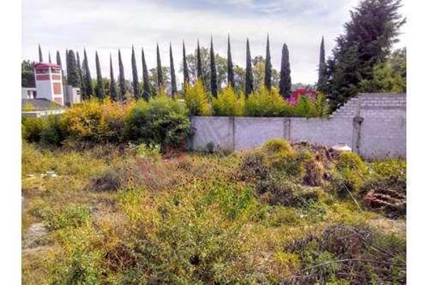 Foto de terreno habitacional en venta en  , atlixco centro, atlixco, puebla, 8852812 No. 01