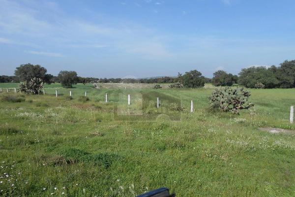 Foto de terreno habitacional en venta en autopista kilometro , huitzila, tizayuca, hidalgo, 5806118 No. 03