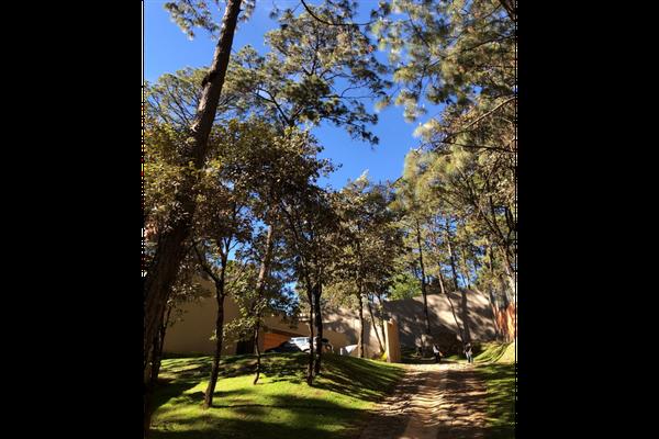 Foto de casa en condominio en venta en  , avándaro, valle de bravo, méxico, 19303303 No. 15