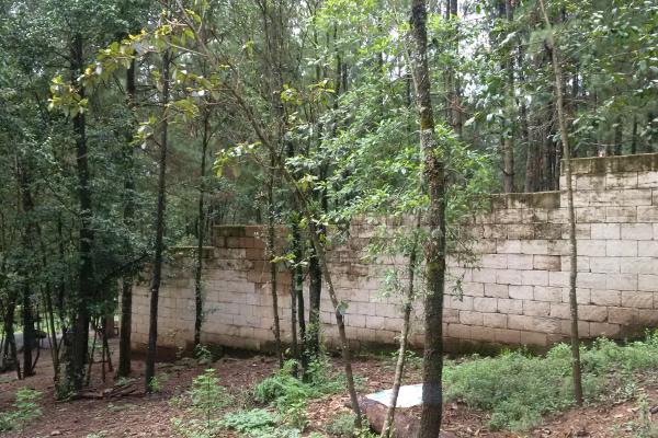 Foto de terreno habitacional en venta en  , avándaro, valle de bravo, méxico, 3219270 No. 04