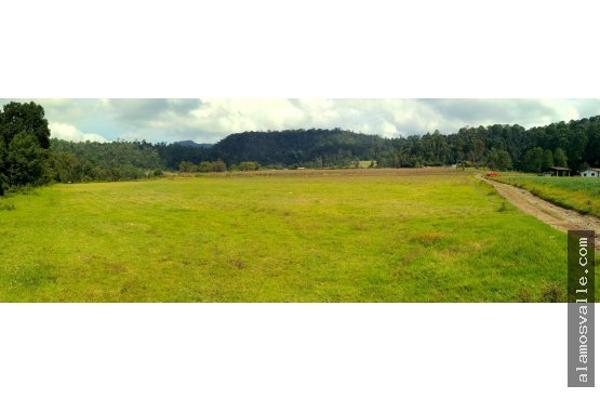Foto de terreno habitacional en venta en  , san sim?n el alto, valle de bravo, m?xico, 4640788 No. 01