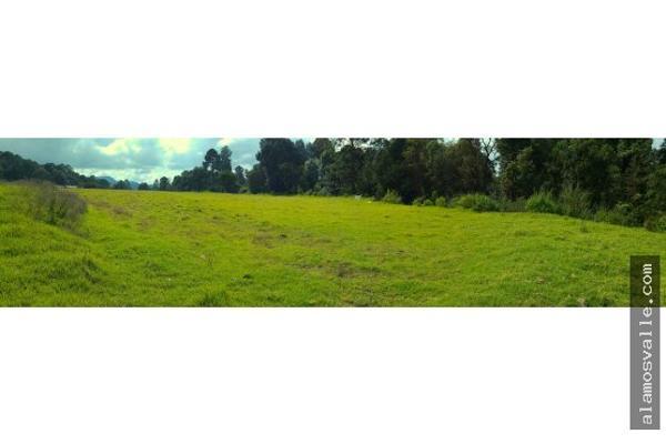 Foto de terreno habitacional en venta en  , san simón el alto, valle de bravo, méxico, 4640788 No. 02