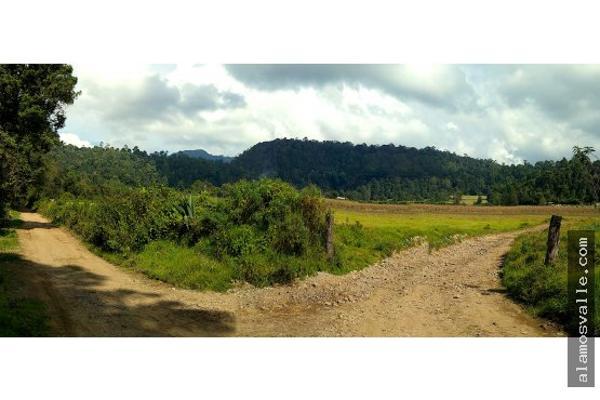Foto de terreno habitacional en venta en  , san sim?n el alto, valle de bravo, m?xico, 4640788 No. 03
