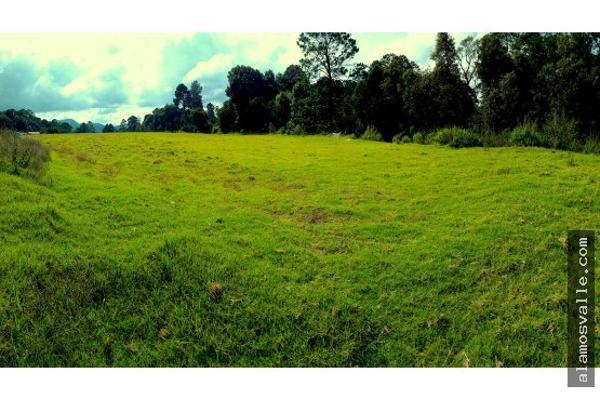 Foto de terreno habitacional en venta en  , san simón el alto, valle de bravo, méxico, 4640788 No. 04