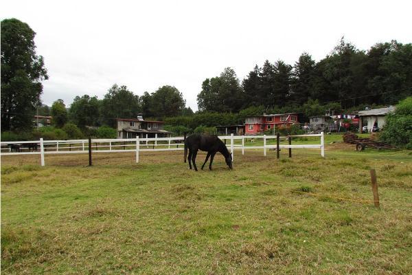 Foto de terreno habitacional en venta en  , san simón el alto, valle de bravo, méxico, 5410232 No. 02