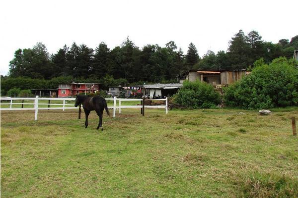 Foto de terreno habitacional en venta en  , san simón el alto, valle de bravo, méxico, 5410232 No. 04