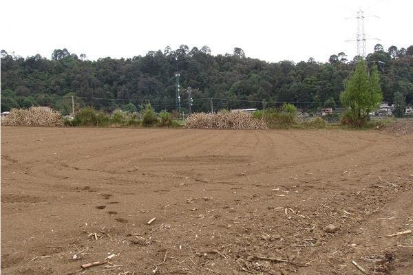 Foto de terreno habitacional en venta en  , san simón el alto, valle de bravo, méxico, 5410248 No. 01