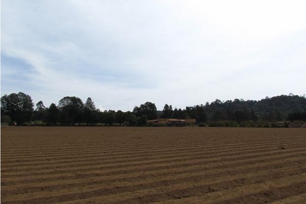 Foto de terreno habitacional en venta en  , san simón el alto, valle de bravo, méxico, 5410248 No. 04