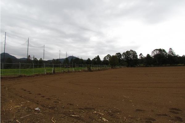 Foto de terreno habitacional en venta en  , san simón el alto, valle de bravo, méxico, 5410248 No. 07