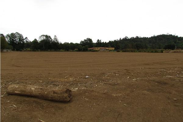 Foto de terreno habitacional en venta en  , san simón el alto, valle de bravo, méxico, 5410248 No. 10