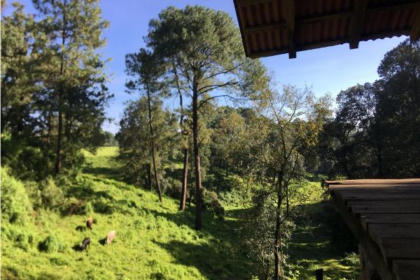 Foto de terreno habitacional en venta en  , avándaro, valle de bravo, méxico, 5648805 No. 06