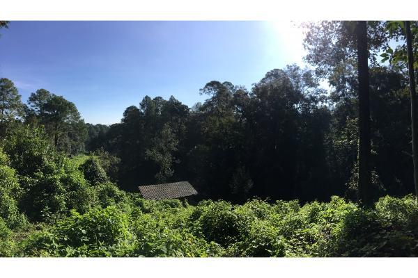 Foto de terreno habitacional en venta en  , avándaro, valle de bravo, méxico, 5648805 No. 07