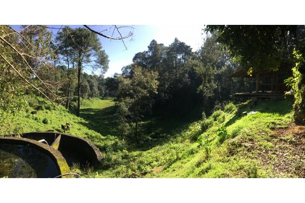 Foto de terreno habitacional en venta en  , avándaro, valle de bravo, méxico, 5648805 No. 08
