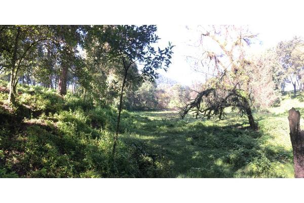Foto de terreno habitacional en venta en  , avándaro, valle de bravo, méxico, 5648805 No. 10