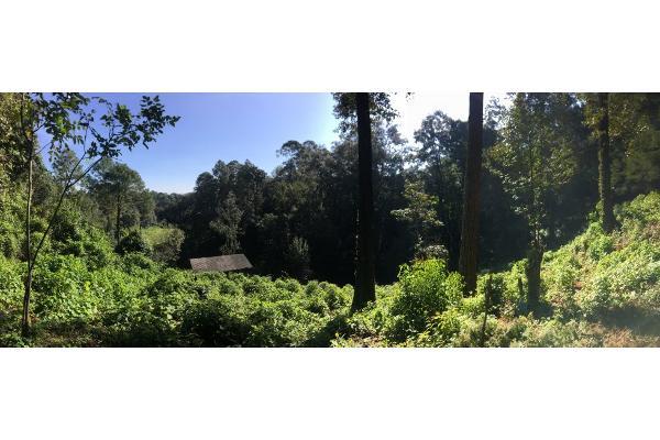 Foto de terreno habitacional en venta en  , avándaro, valle de bravo, méxico, 5648805 No. 11