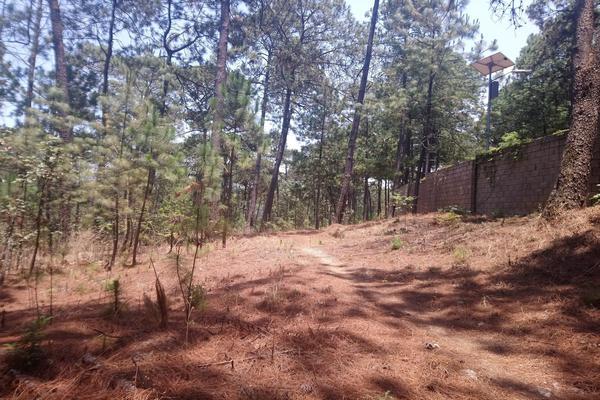 Foto de terreno habitacional en venta en  , avándaro, valle de bravo, méxico, 5877751 No. 02