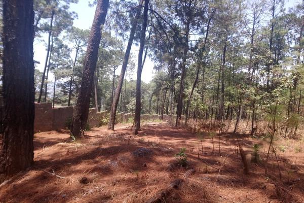Foto de terreno habitacional en venta en  , avándaro, valle de bravo, méxico, 5877751 No. 07