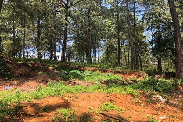 Foto de terreno habitacional en venta en  , avándaro, valle de bravo, méxico, 6146156 No. 05