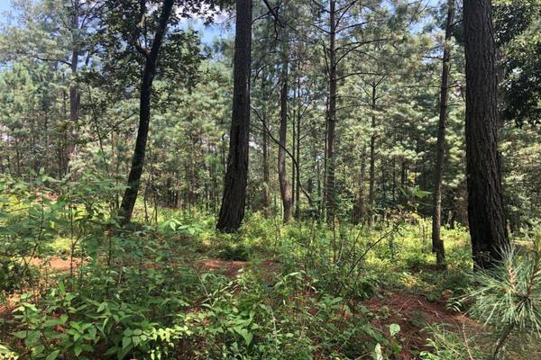 Foto de terreno habitacional en venta en  , avándaro, valle de bravo, méxico, 6146156 No. 08