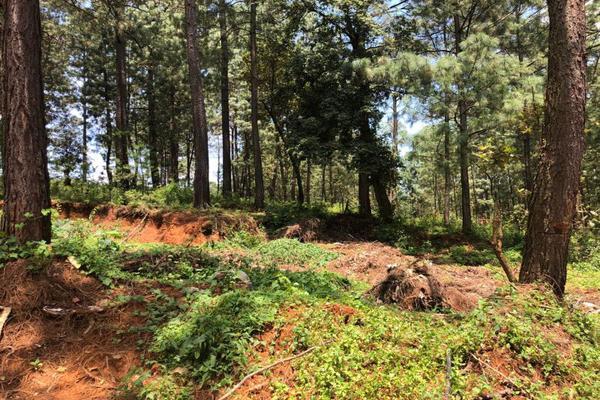Foto de terreno habitacional en venta en  , avándaro, valle de bravo, méxico, 6146156 No. 10