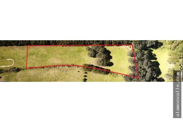 Foto de terreno habitacional en venta en  , avándaro, valle de bravo, méxico, 6169823 No. 02