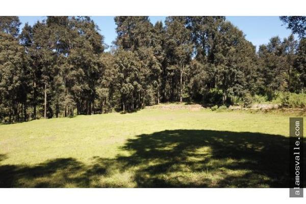 Foto de terreno habitacional en venta en  , avándaro, valle de bravo, méxico, 6169823 No. 03