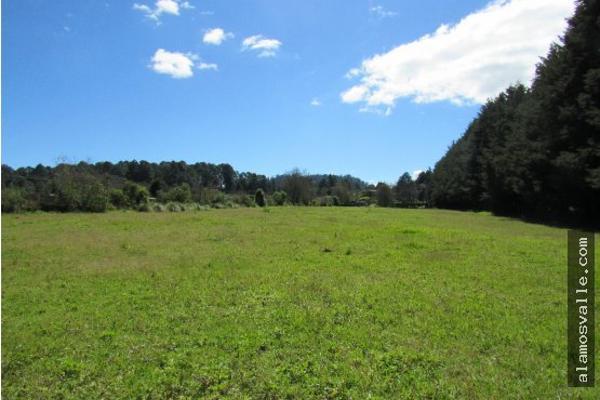 Foto de terreno habitacional en venta en  , avándaro, valle de bravo, méxico, 6169823 No. 04