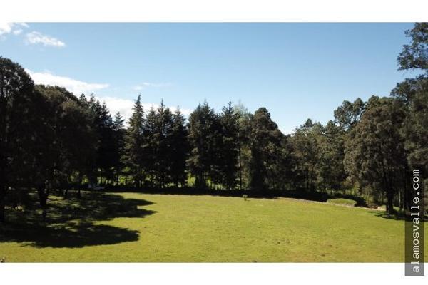 Foto de terreno habitacional en venta en  , avándaro, valle de bravo, méxico, 6169823 No. 05