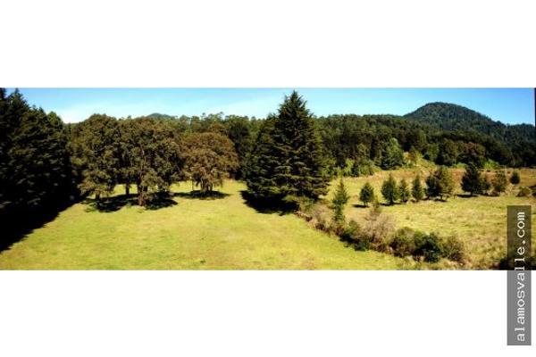 Foto de terreno habitacional en venta en  , av?ndaro, valle de bravo, m?xico, 6169823 No. 06