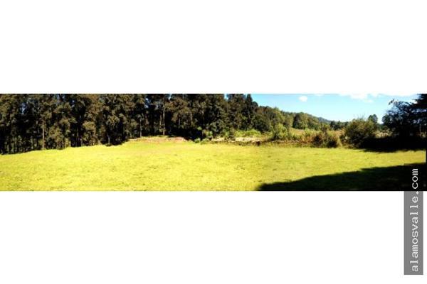Foto de terreno habitacional en venta en  , avándaro, valle de bravo, méxico, 6169823 No. 10