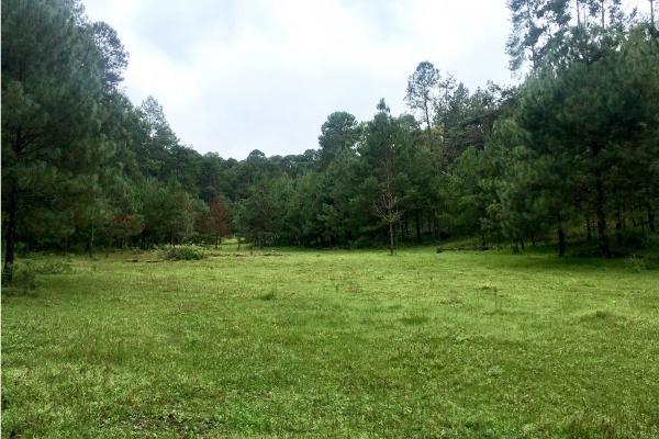 Foto de terreno habitacional en venta en  , el manzano, valle de bravo, méxico, 9304456 No. 01