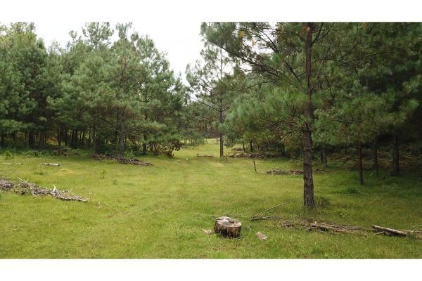Foto de terreno habitacional en venta en  , el manzano, valle de bravo, méxico, 9304456 No. 03