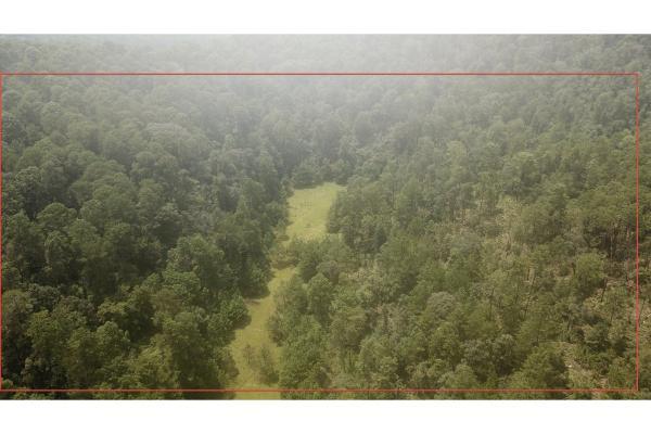 Foto de terreno habitacional en venta en  , el manzano, valle de bravo, méxico, 9304456 No. 05
