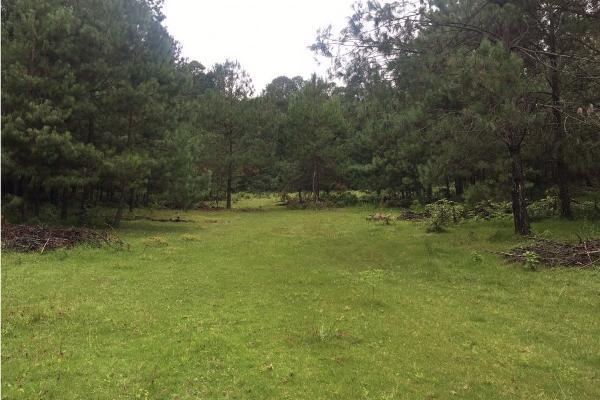 Foto de terreno habitacional en venta en  , el manzano, valle de bravo, méxico, 9304456 No. 06