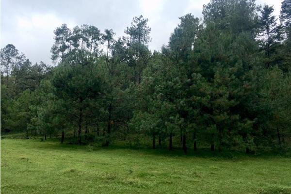 Foto de terreno habitacional en venta en  , el manzano, valle de bravo, méxico, 9304456 No. 07