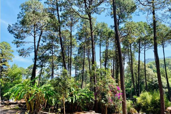 Foto de terreno habitacional en venta en  , avándaro, valle de bravo, méxico, 9304536 No. 04