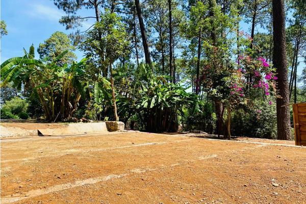 Foto de terreno habitacional en venta en  , avándaro, valle de bravo, méxico, 9304536 No. 05