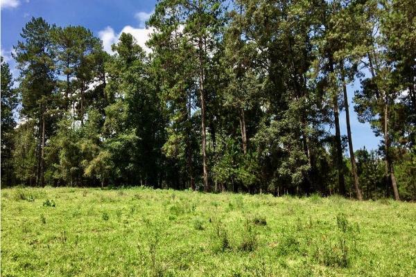 Foto de terreno habitacional en venta en  , avándaro, valle de bravo, méxico, 9304786 No. 01