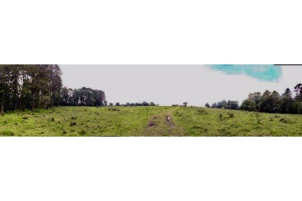 Foto de terreno habitacional en venta en  , avándaro, valle de bravo, méxico, 9304786 No. 08
