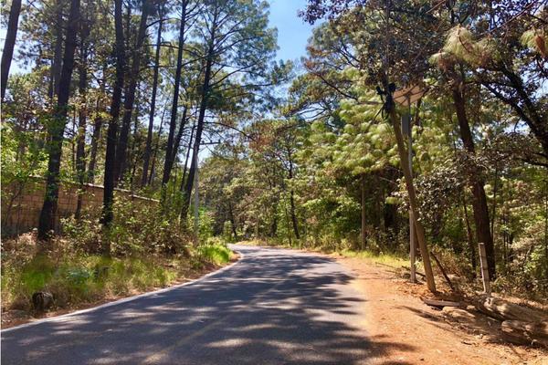 Foto de terreno habitacional en venta en  , avándaro, valle de bravo, méxico, 9304911 No. 02