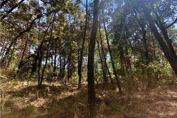 Foto de terreno habitacional en venta en  , avándaro, valle de bravo, méxico, 9304911 No. 04