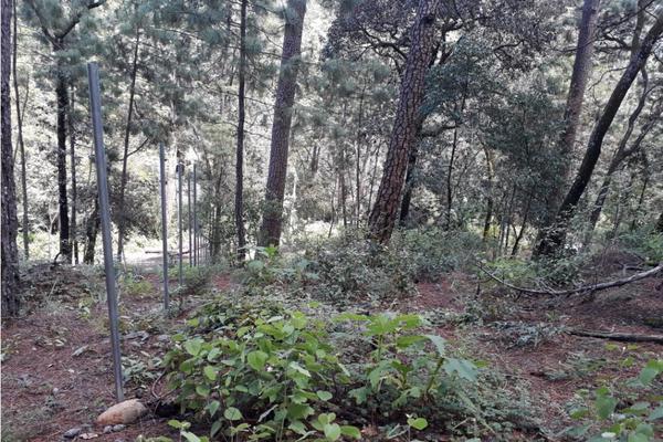 Foto de terreno habitacional en venta en  , avándaro, valle de bravo, méxico, 9305413 No. 07