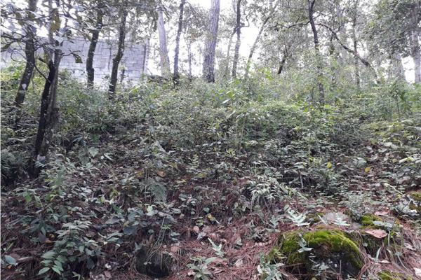 Foto de terreno habitacional en venta en  , avándaro, valle de bravo, méxico, 9305413 No. 08