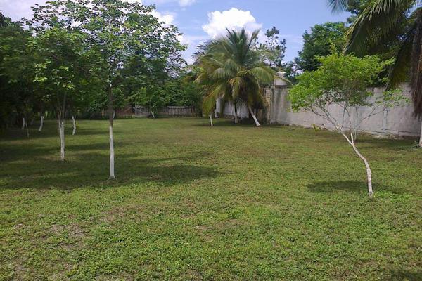 Foto de terreno comercial en renta en avenida 19c , diego rojas, bacalar, quintana roo, 7157960 No. 03